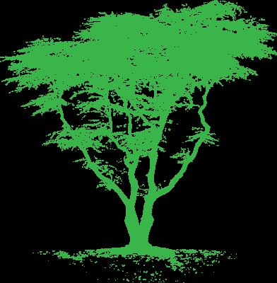 OD-TREE_OF_LIFE