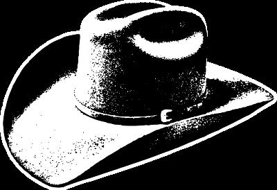 CAT_3-COWBOY-HAT-B