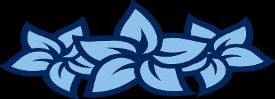 OD-FLOWERS
