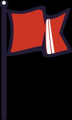 FLAG_C